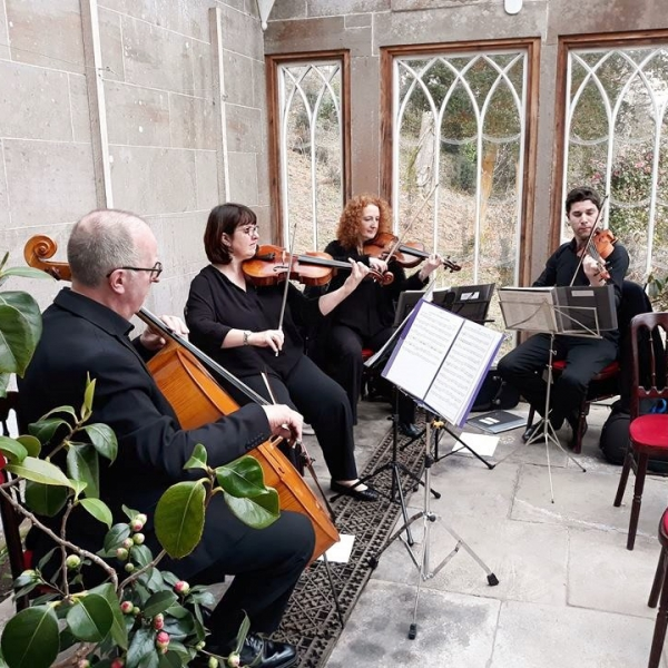 The Stirlingshire String Quartet String Quartet Stirlingshire area