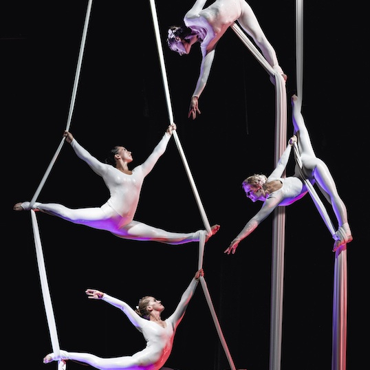 Aerial Silk Displays Circus Performer London
