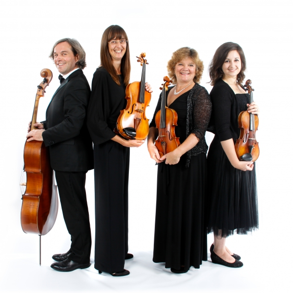 St Swithuns Strings String Quartet Bedfordshire