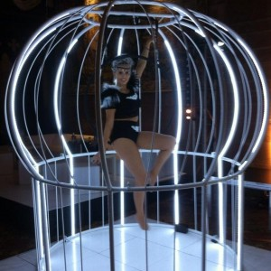 Aerial Bird Cage Aerial Performer East Yorkshire