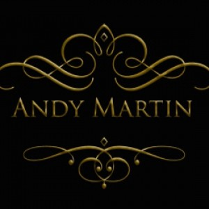 Andy Martin Wedding DJ Somerset