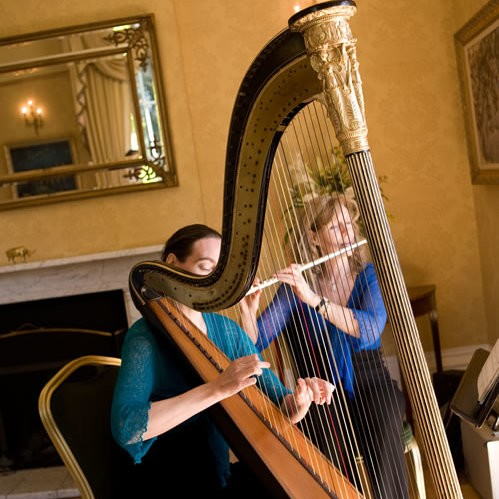 Harmony Duo Harp and Flute Duo London