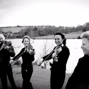 Prosecco Quartet String Quartet Worcestershire
