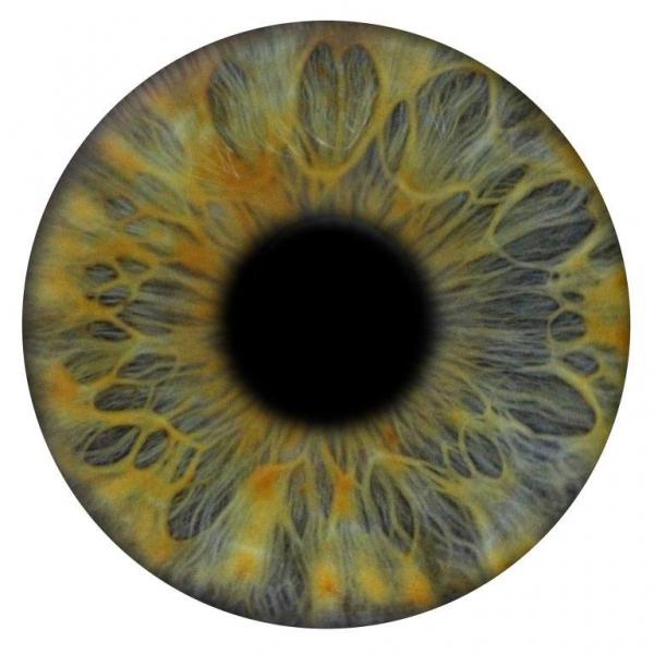 Eye Art Photography Photo Booth London