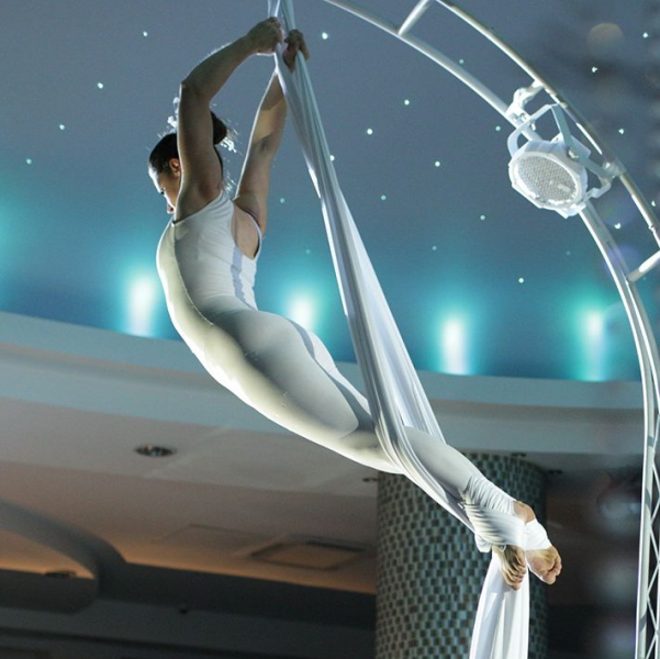 The Revolving Aerialists Circus Performer London