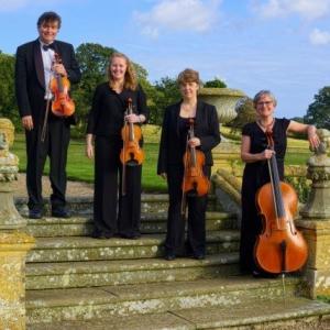 Elegant Strings String Quartet Worcestershire