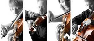 Quay Strings String Quartet Dorset