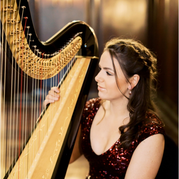 The Function Harpist Harpist Denbigh