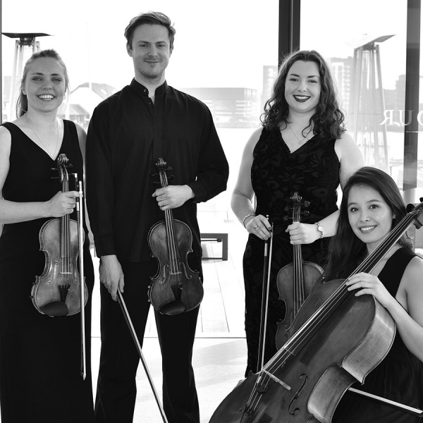 Southern Strings String Quartet Hampshire