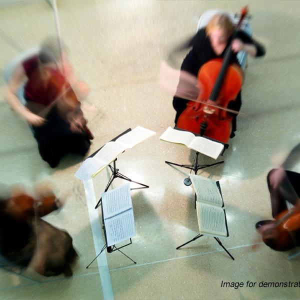 The Scottish String Quartet  Edinburgh