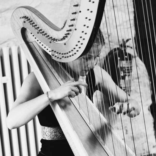 The Southwestern Harpist Harpist North Yorkshire