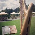 Event The Southwestern Harpist Harpist North Yorkshire