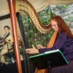 Event M F Harp (Harpist) Harpist Bristol, Somerset