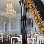Event Amour Harp Harpist West Sussex