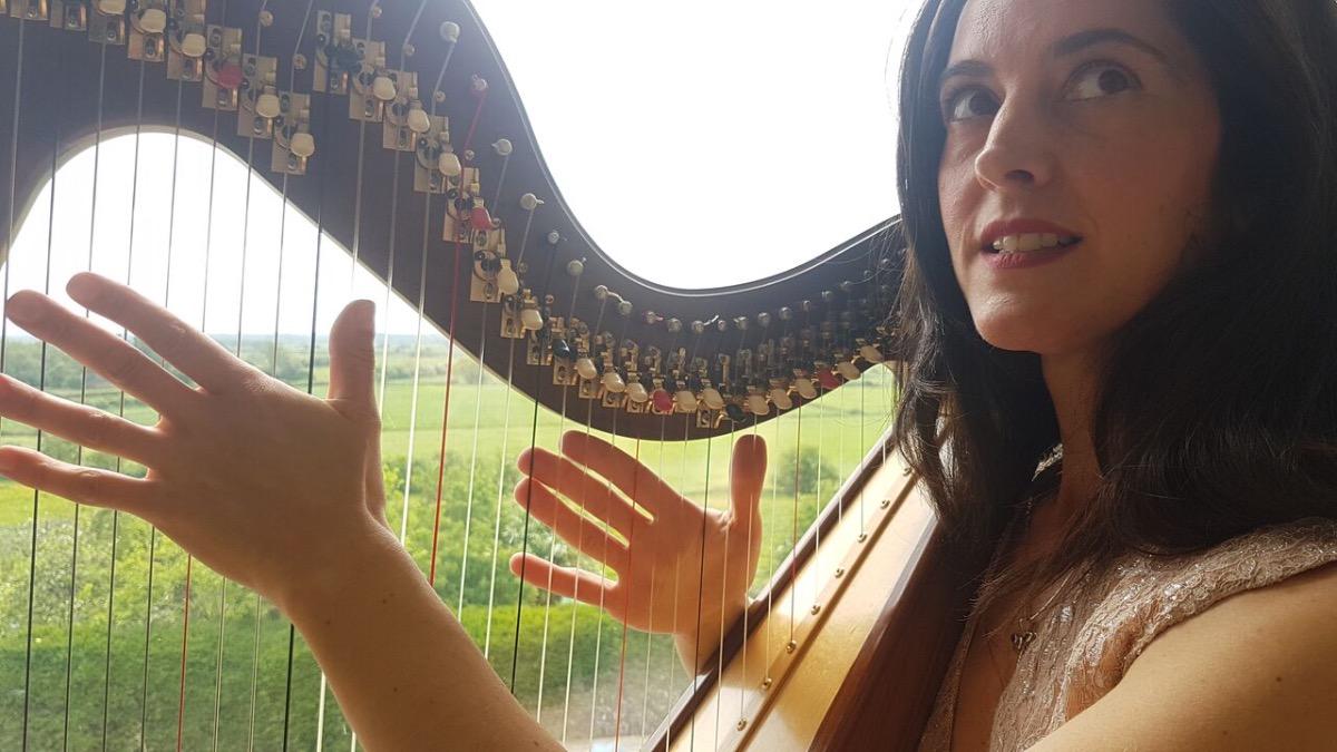 Promo J H Harp (Harpist) Electric and Acoustic Harpist Somerset