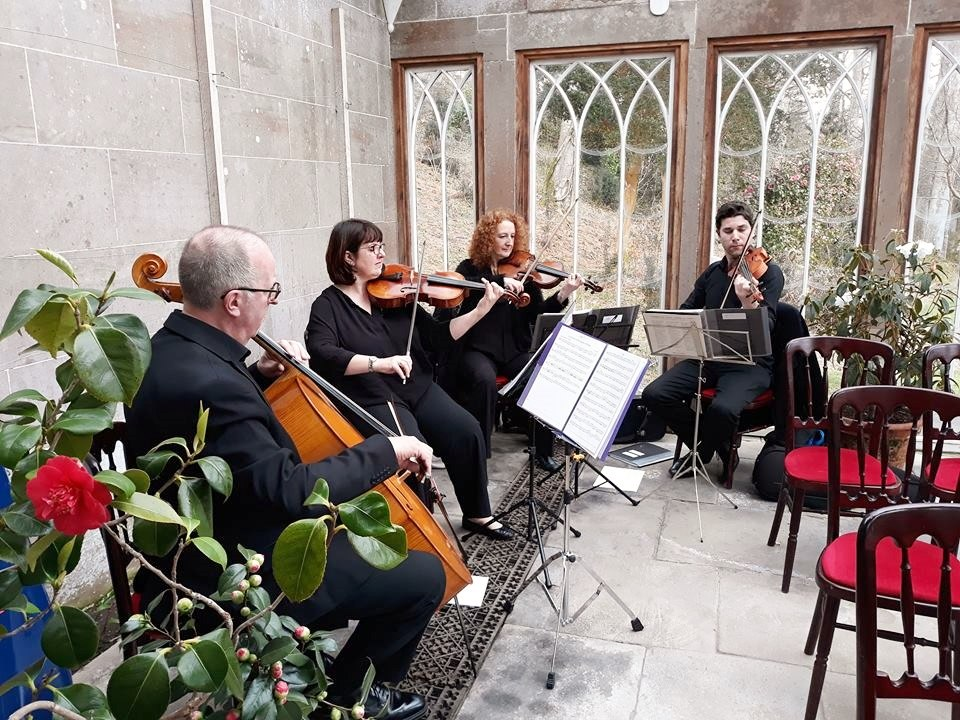 Promo The Stirlingshire String Quartet String Quartet Stirlingshire area