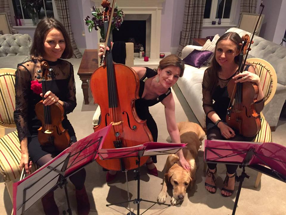 Promo Egeria Strings String Trio Surrey