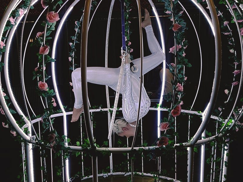 Promo Aerial Bird Cage Aerial Performer East Yorkshire