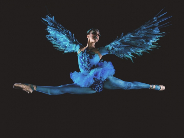 Promo Winged Ballerinas Dancer Dorset
