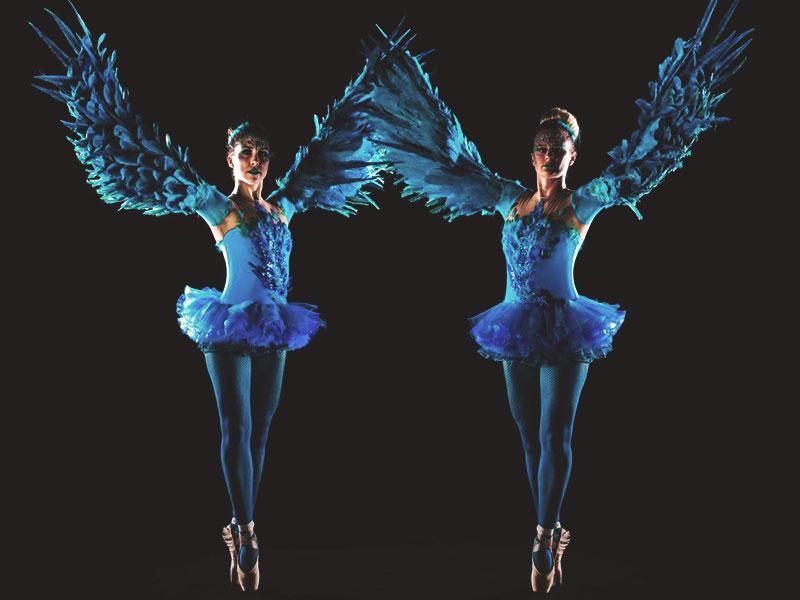 Promo Winged Ballerinas  Dorset