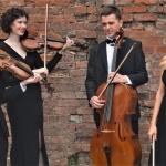 Promo Larkspur Strings  Greater Manchester