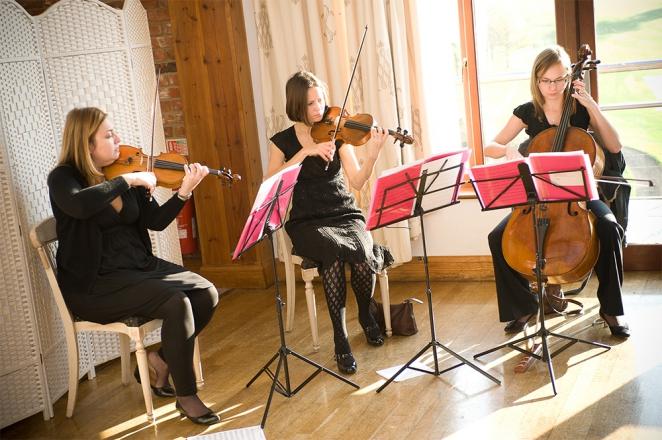 Promo Egeria Strings String Trio Surrey