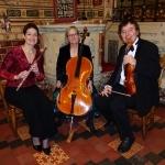 Promo Trio Primo String Trio Worcestershire