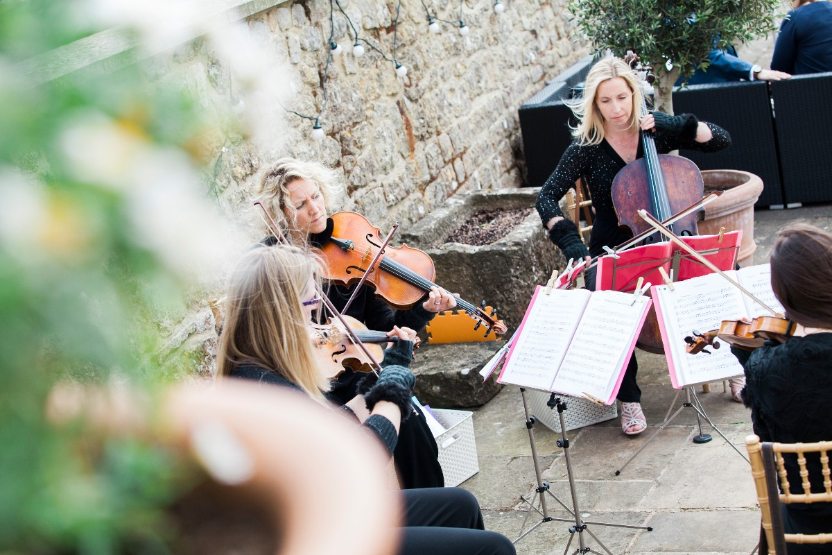 Promo The Rose String Quartet String Quartet Hertfordshire
