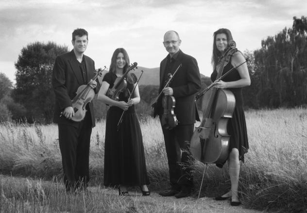 Promo Worcester String Quartet  Worcestershire