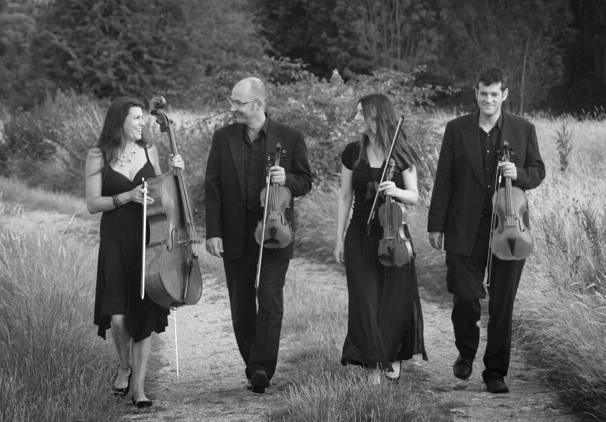 Promo Worcester String Quartet String Quartet Worcestershire