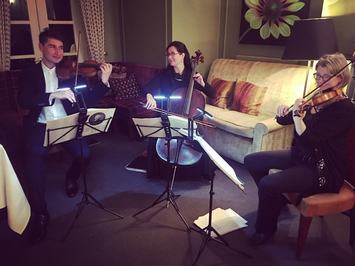 Promo Crystal Strings String Quartet West Midlands