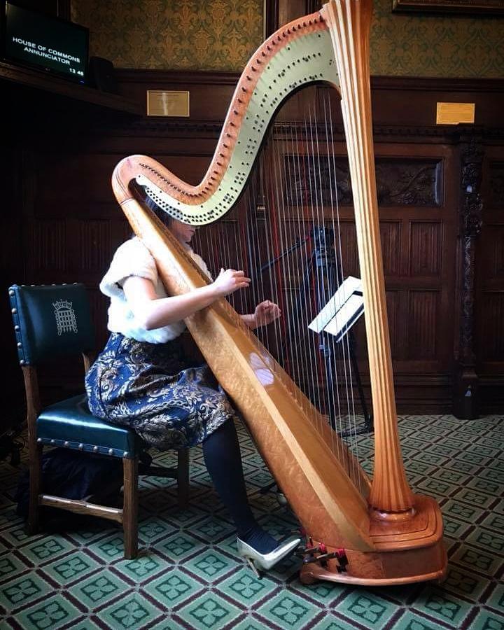 Promo Catalana Harpist London