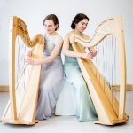 Promo Ace of Harps Harpist Kent