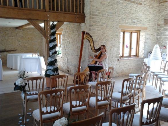 Promo M F Harp (Harpist) Harpist Somerset