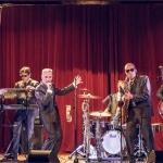 Promo The Black Harringtons Rhythm And Blues Band Birmingham, West Midlands