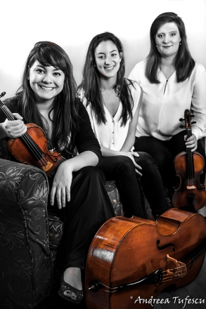 Promo The Cavendish String Trio String Trio London