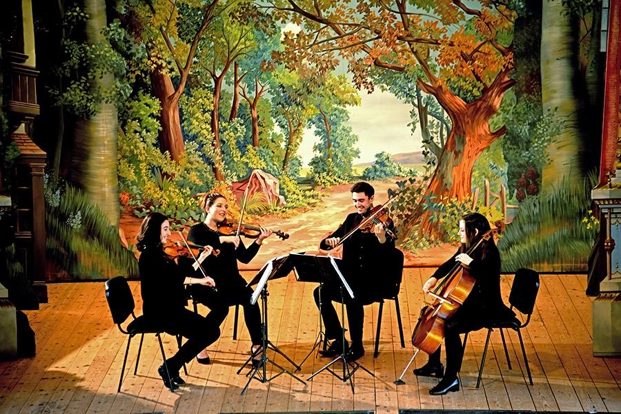 Promo Metropolitan Strings String Quartet Surrey