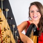 Promo The Function Harpist Harpist Dolgellau, Gwynedd