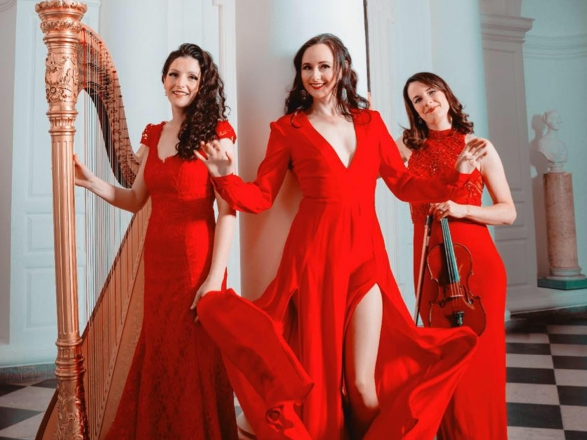 Promo Roses Of Ireland Harp, Violin and Voice Trio Southern Ireland