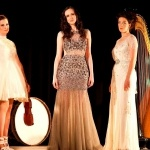 Promo Roses Of Ireland Harp, Violin and Voice Trio Dublin, Ireland