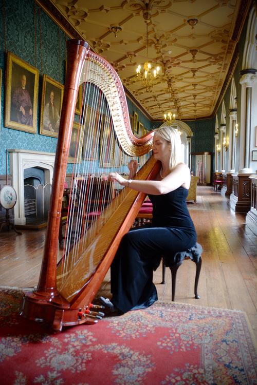 Promo Siona Stockel (Harpist) Harpist Somerset