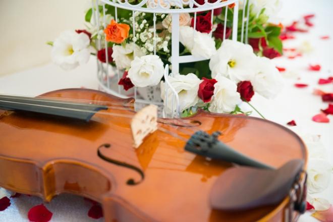 Promo The Scottish String Quartet String Quartet Edinburgh