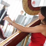 Promo The Cardiff Harpist  Glamorgan