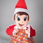 Promo The Christmas Elf Walkabout Character Norfolk