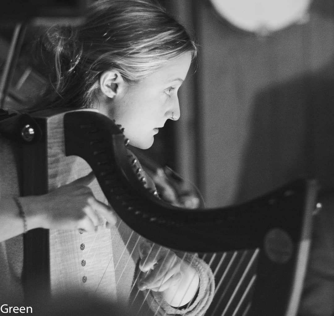 Promo The Southwestern Harpist Harpist North Yorkshire