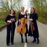 Promo Adelaide Quartet String Quartet Surrey