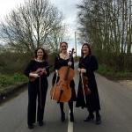 Promo Adelaide Trio  Surrey