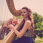 Promo The Function Harpist  Dolgellau, Gwynedd