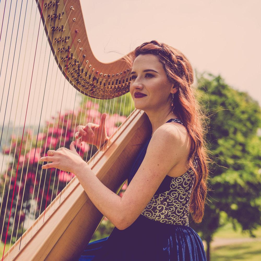 Promo The Function Harpist  Denbigh