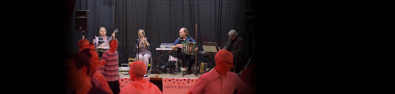 the thirty-nine steps trio ceilidh band somerset